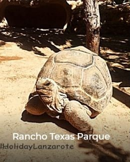 Rancho Texas Park